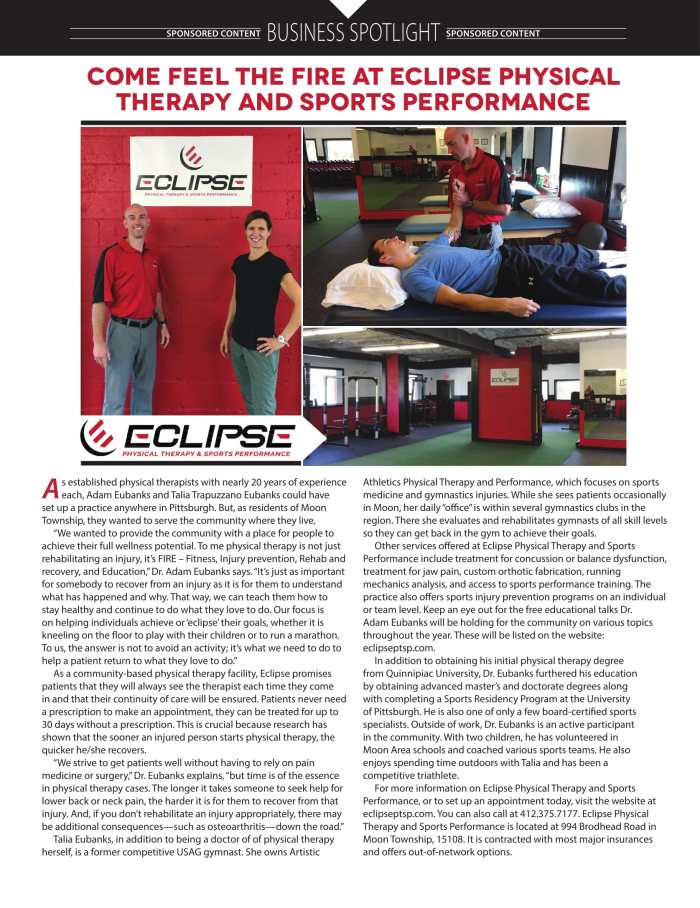 Eclipse Spotlight Article
